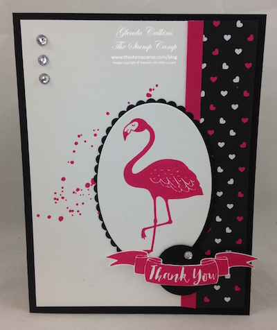 Stampin' Up! Pop of Paradise