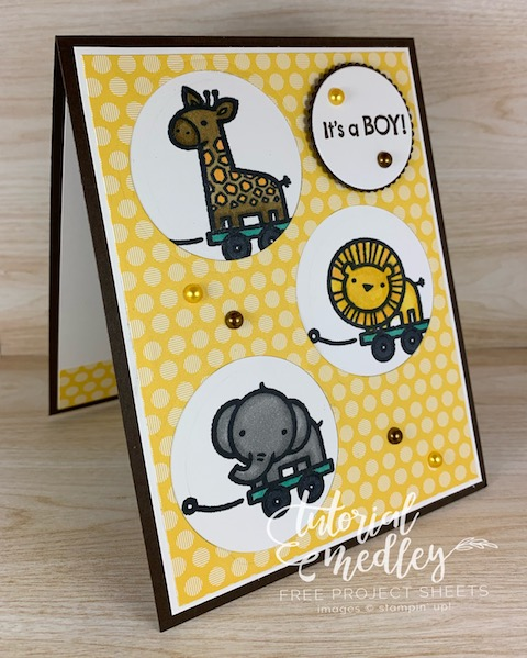 The Baby Pull Toys stamp set from Stampin' Up! is perfect for baby cards, scrapbook pages, baby announcements or baby showers. These little animals are so adorable and cute you I couldn't resist creating little peek a boo windows for them. #thestampcamp #stampinup #babycard